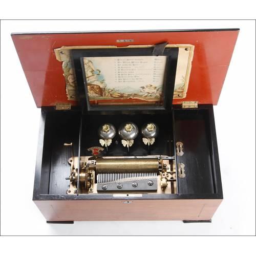 Delicada Caja de Música Antigua con Mariposas Autómatas. Inglaterra, Circa 1890
