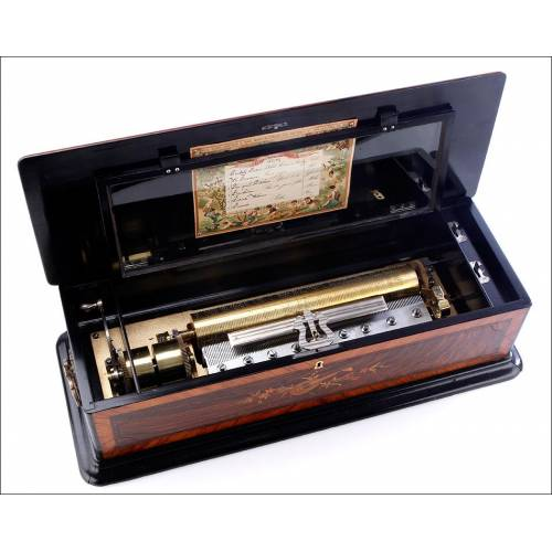 Importante Caja de Música Antigua con Magnífico Sonido. Estados Unidos, Circa 1900
