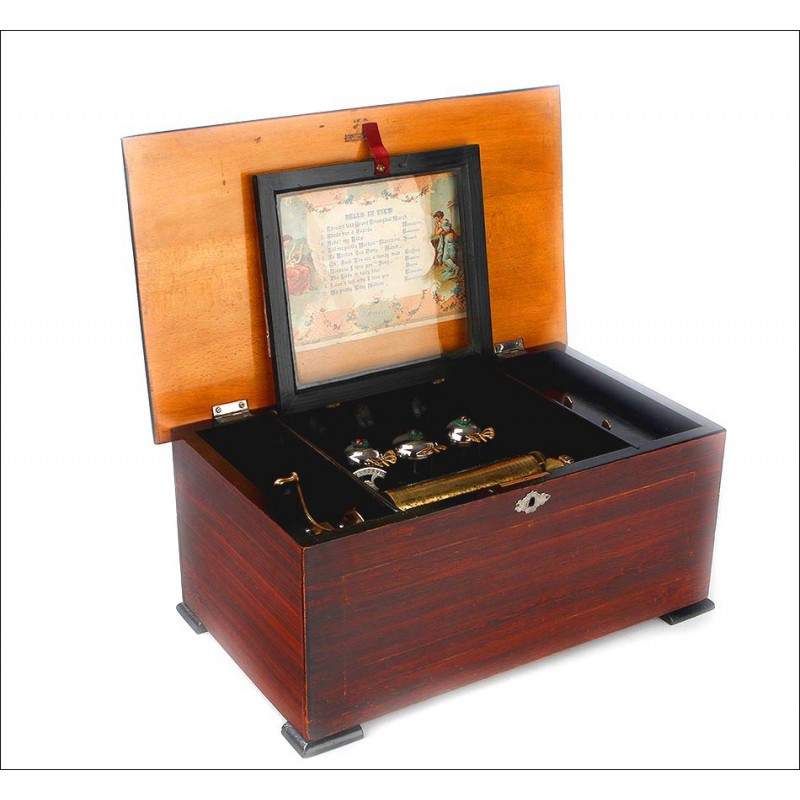 Caja de Música de 12 Melodías, con Mariposas Autómatas, 1880-1900