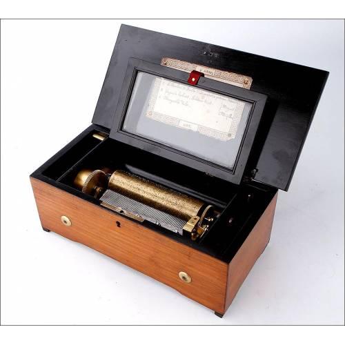 Preciosa Caja de Música en Excelente Estado y Funcionando Bien. Suiza, Siglo XIX
