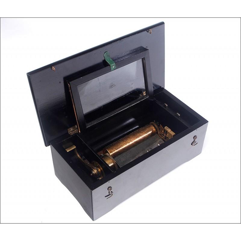 Preciosa Caja de Música en Madera Ebonizada y Funcionando Muy Bien. Suiza, Siglo XIX