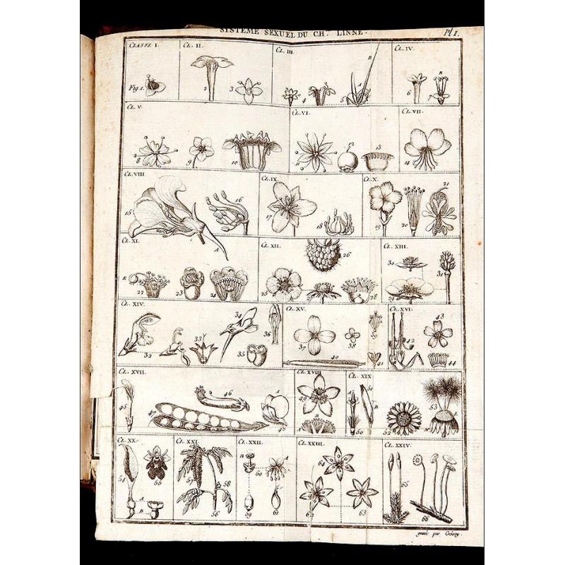 """Botánica, 1795. """"Manuel de botanique à l'usage des amateurs et des voyageurs""""."""