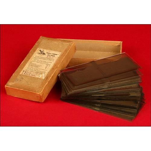 Magnífica Colección de Fotografías Estereoscópicas de la Primera Guerra Mundial, 6 x 13 cms