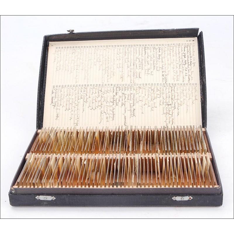 Fascinante Conjunto de Preparados para Microscopio. Alemania, Años 30-40 del Siglo XX