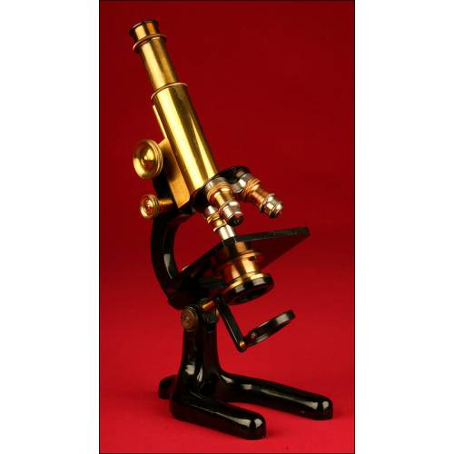 Microscopio Alemán de Principios del s. XX, Circa 1910. Bien Conservado y Funcionando
