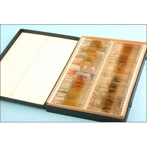 Colección de 100 preparados antiguos para microscopio
