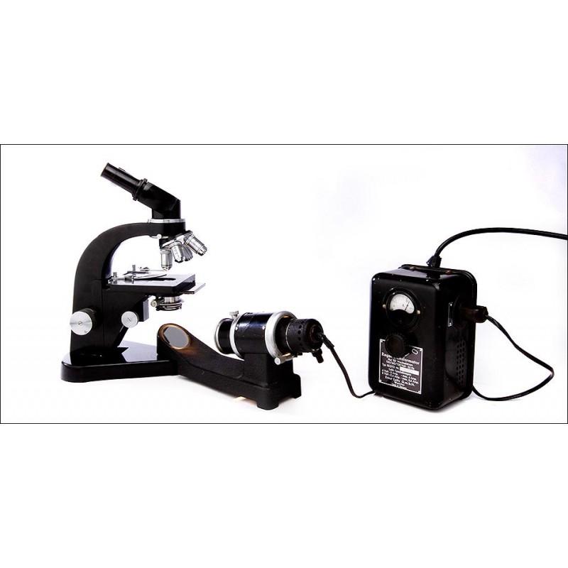 Microscopio Binocular Leitz con Antorcha de Luz. Años 50-60. Bien Conservado y Funcionando Perfectamente